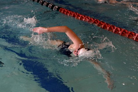 Swim, dive team prepares for state competition